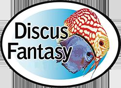 Discus Fantasy Logo